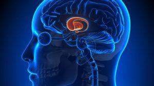 Beyin Tümörleri